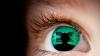 TVP eye looking through screen